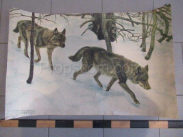 School poster - wolves
