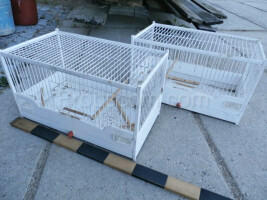 Wooden cages white