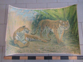 School poster - tigers
